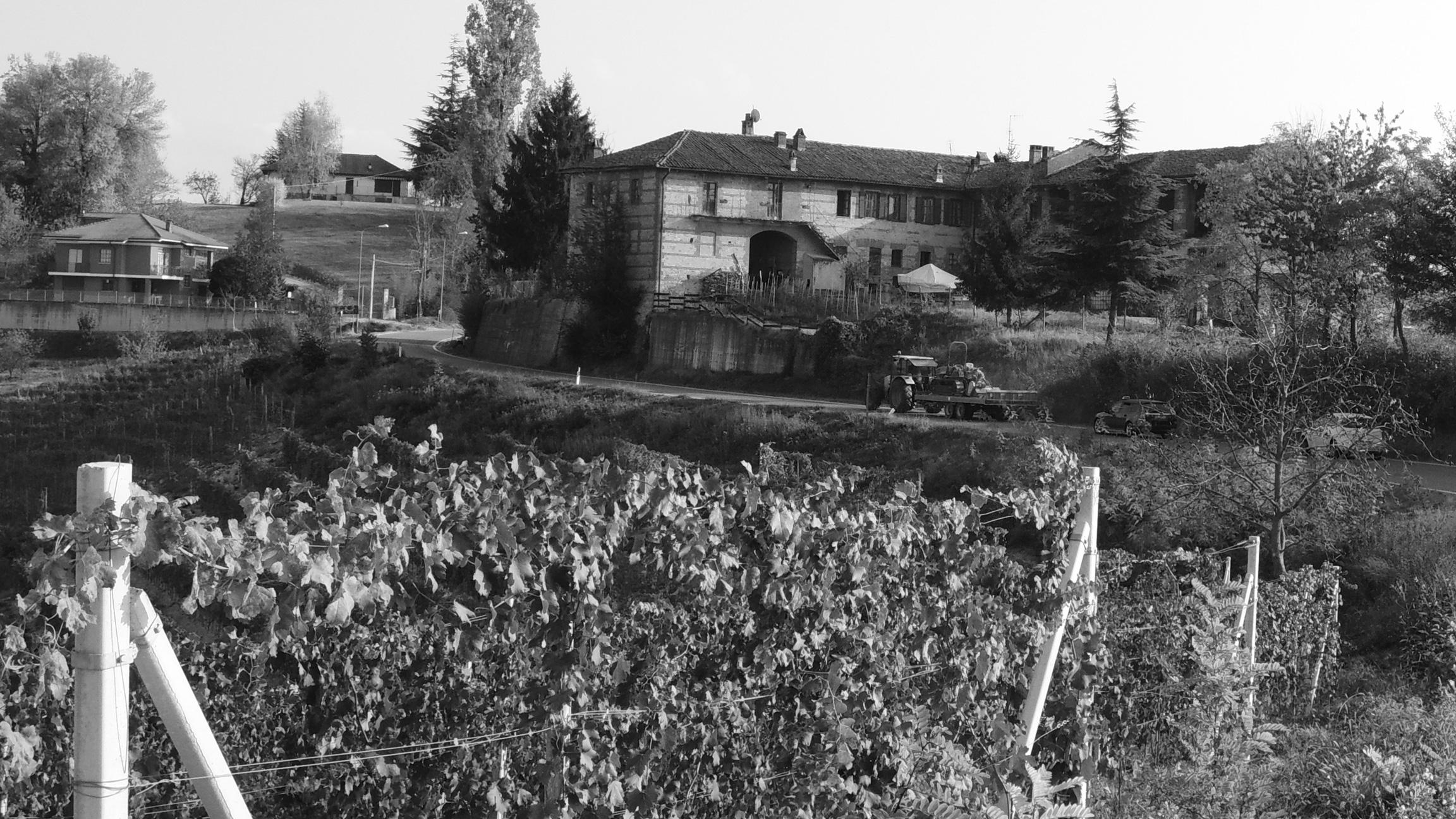 Wijngebied Barolo