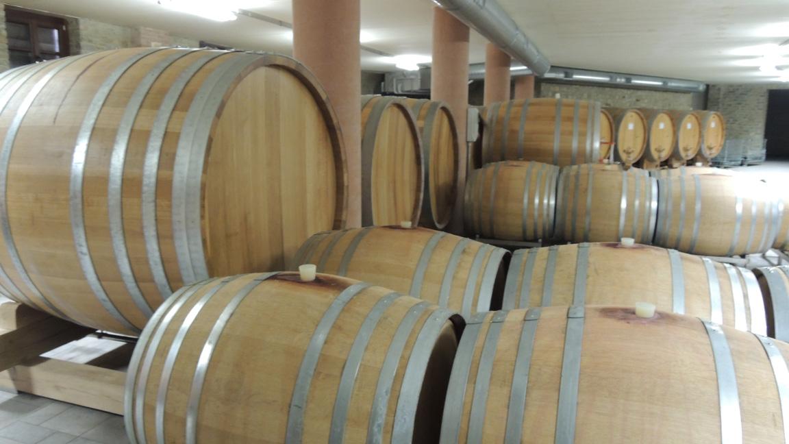 wijnkelder in Langhe, Piemonte